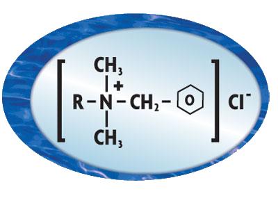 Algae Chemistry by Go Chemless