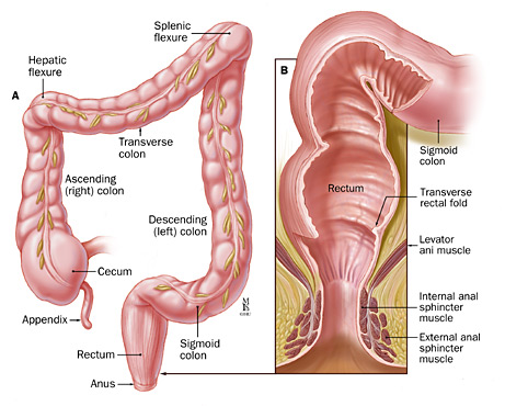 Does anal itching equal colon cancer