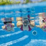 CPSC Study Reveals Troubling Backyard Pool Death Statistics.