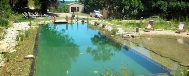 Your Quest for Chemical Free Lifestyle Swimming Pools is Only Natural.